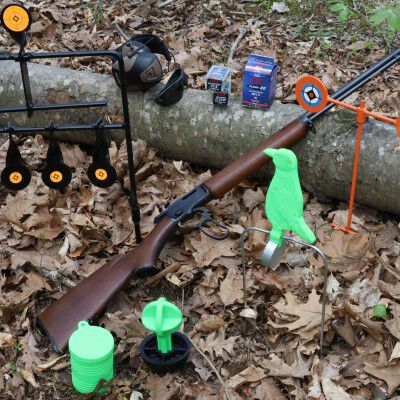 ammo and targets sitting on a log outside