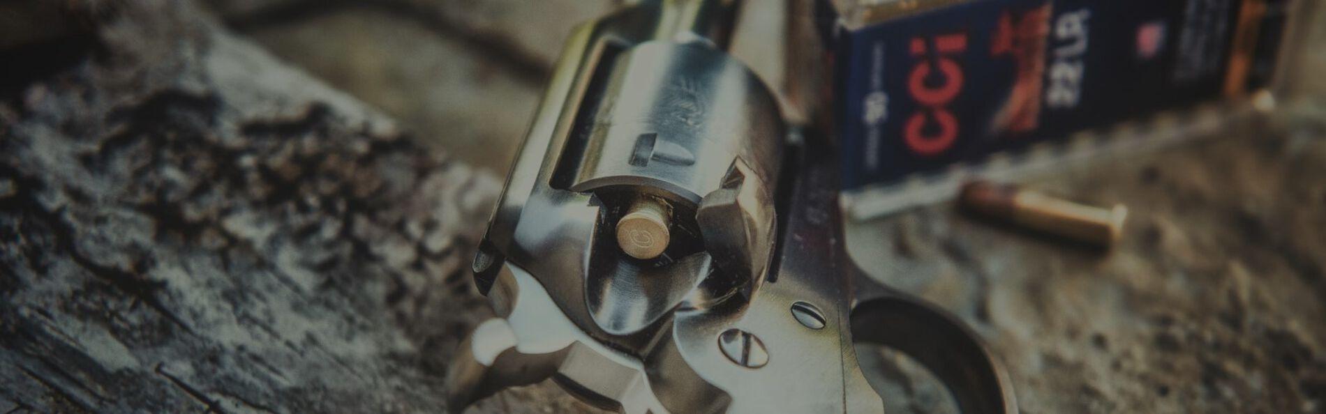 handgun loaded with CCI 22LR